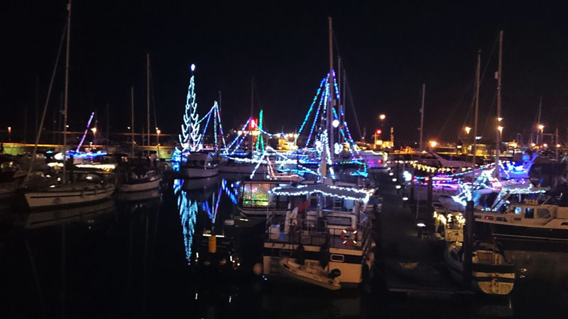 Ramsgate Harbour Christmas Lights - Gallery Image